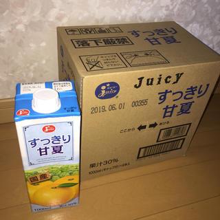 JA 熊本果実連 Juicy すっきり甘夏【1ケース】