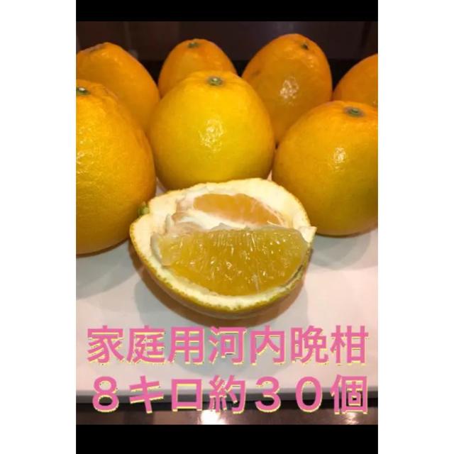 河内晩柑 宇和島 みかん 美生柑 グレープフルーツ ビタミン  食品/飲料/酒の食品(フルーツ)の商品写真