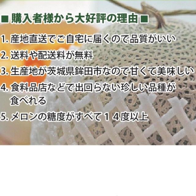 産地直送 茨城県鉾田市産 むつみレッド 3kg 3玉〜4玉  糖度15度以上 食品/飲料/酒の食品(フルーツ)の商品写真