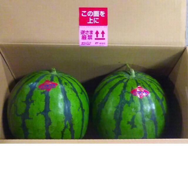 熊本産、特大ジャンボすいか、1玉 食品/飲料/酒の食品(フルーツ)の商品写真