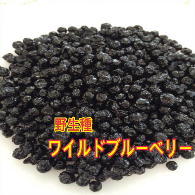 ワイルドブルーベリー 業務用1㎏ 【送料無料】 食品/飲料/酒の食品(フルーツ)の商品写真