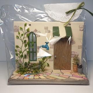 Miniatur Apfelorangenbaum Indoor /& Outdoor Obstpflanzen DIY Garten 12