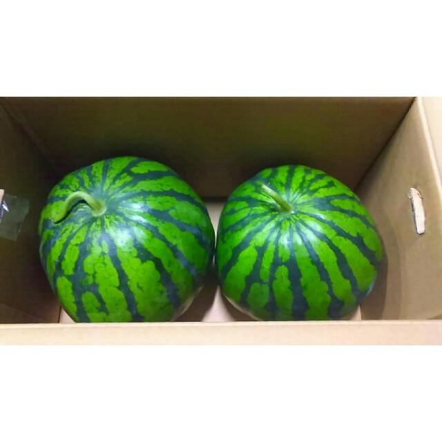 《お待たせ致しました!》熊本特産一番なりすいか2玉 送料無料 食品/飲料/酒の食品(フルーツ)の商品写真