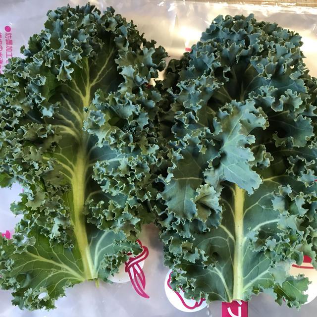 朝採り新鮮! 健康野菜! スーパーフード サラダケール カーリー カリーノケール 食品/飲料/酒の食品(野菜)の商品写真
