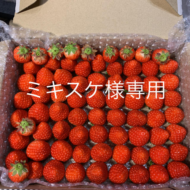 ミキスケ様専用●小粒苺1.3kg●クール便 食品/飲料/酒の食品(フルーツ)の商品写真
