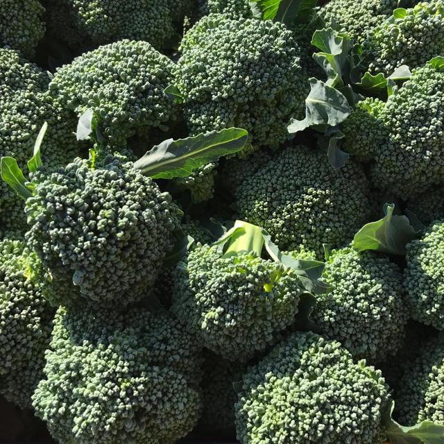ブロッコリー わき芽 減農薬 おはよう 宅急便コンパクト 箱いっぱい 食品/飲料/酒の食品(野菜)の商品写真