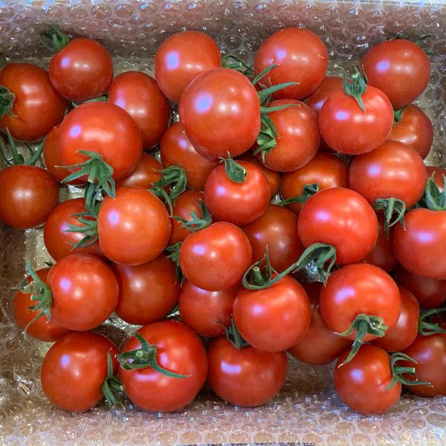 〈特別価格〉フルティカトマト2kg 食品/飲料/酒の食品(野菜)の商品写真