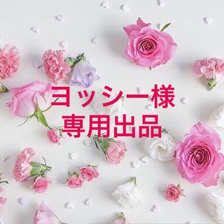 ヨッシー様専用出品(ピアス)