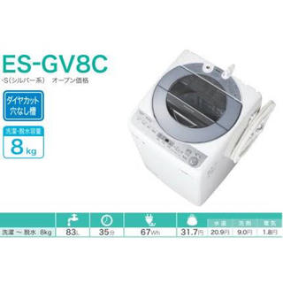 『りな様専用』 穴なし槽シルバー系 インバーター搭載 8kg ES-GV8C-S(洗濯機)