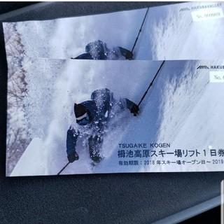 栂池高原スキー場1日券無料引換券(スキー場)