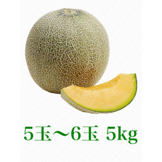 産地直送  クインシーメロン 5kg 5玉〜6玉  糖度14度以上(フルーツ)