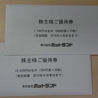 ホットランド 株主優待券22500円分(フード/ドリンク券)