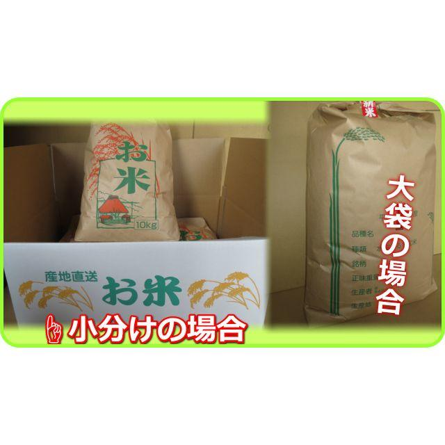 30年ミルキースター白米27kgの出品です!ミルキークイーンのような食感! 食品/飲料/酒の食品(米/穀物)の商品写真