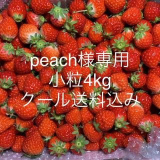peach様専用●小粒苺4kg●さがほのか●クール便(フルーツ)