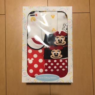 Disney - ディズニーリゾート☆ベビー靴下•スタイセット