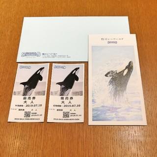 鴨川シーワールド 大人ワンデーパスペアチケット/前売券2枚セット(水族館)