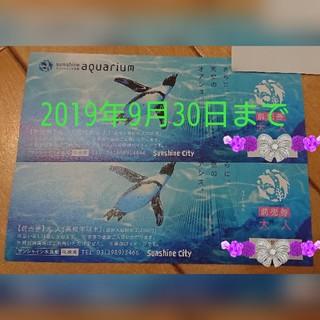 2枚セット/サンシャイン水族館 前売券 大人(水族館)