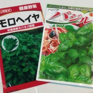家庭菜園 種二種(野菜)