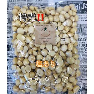 塩ありマカダミア 500g (その他)