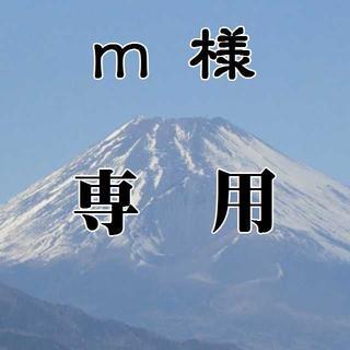 m 様 専用(その他)