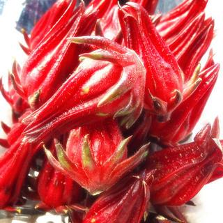 ハイビスカス ローゼル 乾燥10g(沖縄県産) ハーブ ティー(健康茶)