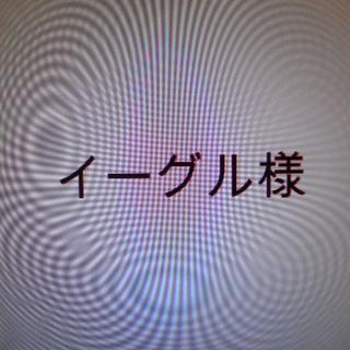 イーグル様専用 カッティングステッカー(その他)