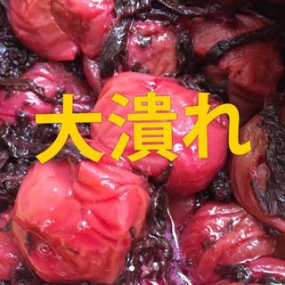 大潰れ 南高梅 紫蘇漬け 梅干し 900グラム (漬物)