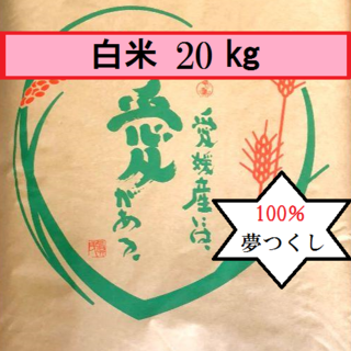 お米 H30 夢つくし 白米 20㎏(米/穀物)