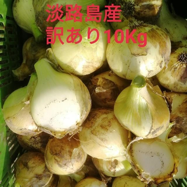 ★訳あり10Kg★淡路島新玉ねぎ 食品/飲料/酒の食品(野菜)の商品写真