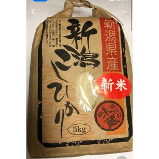 お米 5キロ(米/穀物)