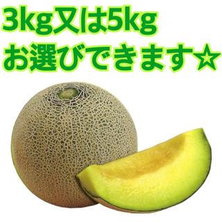 産地直送 茨城県鉾田市産 イバラキング 3kg 5kg 糖度15度以上