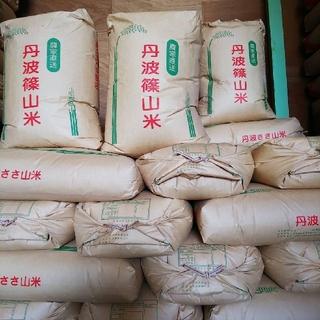 清流育ち 丹波ささやま米(米/穀物)