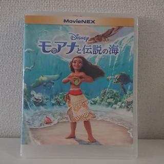Disney - モアナと伝説の海 DVD blue-ray