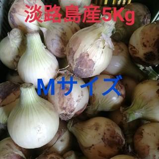 ★お買い得‼Mサイズ5Kg★淡路島新玉ねぎ
