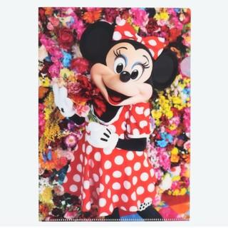 ディズニー(Disney)のクリアホルダー イマジニングザマジック 蜷川実花 ミニーマウス ディズニーランド(ファイル/バインダー)