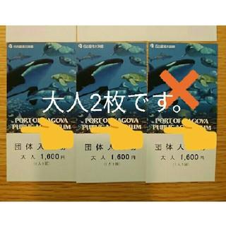 名古屋港水族館 入館券 大人2枚(水族館)