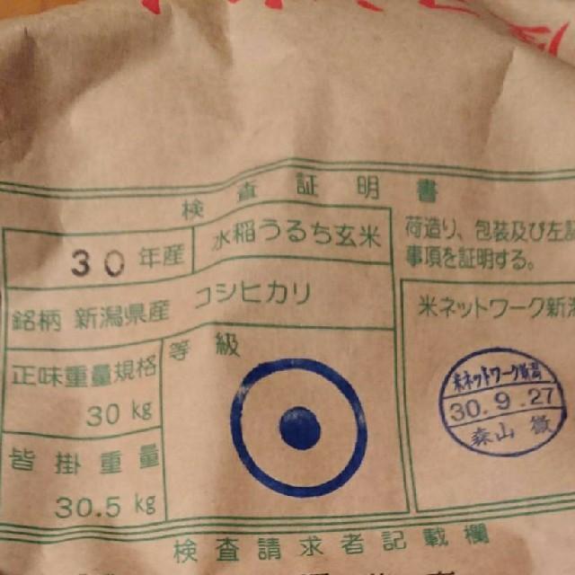 魚沼コシヒカリ【10㎏(5㎏×2)】農家直送‼️ 食品/飲料/酒の食品(米/穀物)の商品写真