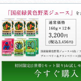 ミリオン 国産緑黄色野菜ジュース お試しセット(野菜)