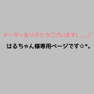 はるちゃん様専用ページ☆*。(外出用品)