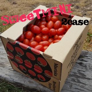 スイートミニトマト800g1箱(野菜)