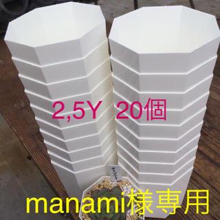 manami様専用★八角プラ鉢2.5Y 20個(その他)