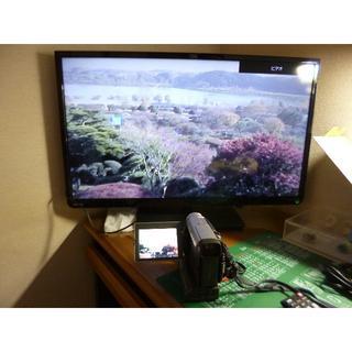 パナソニック(Panasonic)のPanasonic ハンディーカム NV-DS7(ビデオカメラ)