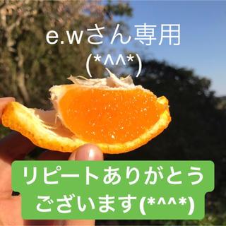 e.wさん専用ページとなります(*^^*)(フルーツ)