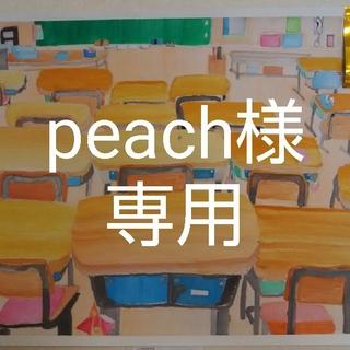 peach様専用(その他)
