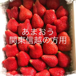 朝採りいちご あまおう 二級品(フルーツ)