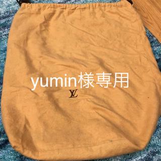 ルイヴィトン(LOUIS VUITTON)のLOUIS VUITTON保存袋(ショップ袋)