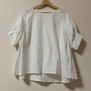 ケービーエフ(KBF)のKBF シャツ(シャツ/ブラウス(半袖/袖なし))