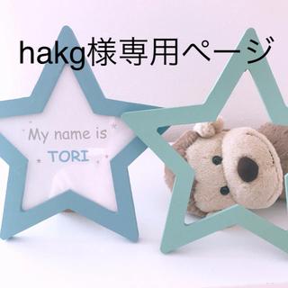 hakg様専用ページ(アルバム)