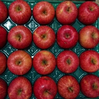 みーた6262様専用 りんご サンふじ&星の金貨 10Kg 43個(フルーツ)