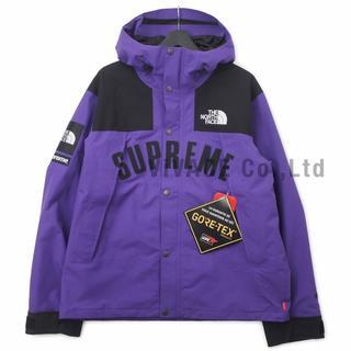 シュプリーム(Supreme)のSupreme TNF Arc Logo Mountain Parka 紫XL(マウンテンパーカー)